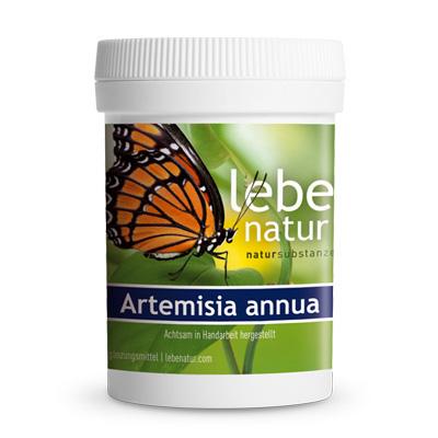 Artemisia annua-90-Kps